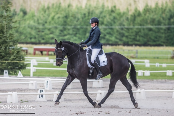 Morgan Beere - Redwood Furst Affair  -  Dressage NZ Youth Squad