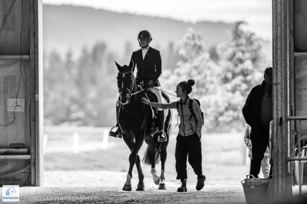 Nikita Osborne rides SF Austin during the EquiBreed 4 Year Old Future Star - Round 1. 2019 Future Star Dressage Championships at the National Equestrian Center, Taupo. Thursday 11 April. Copyright Photo: Libby Law Photography