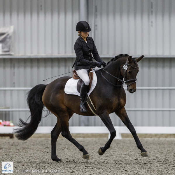 Nicole Sweney rides Quaterly during the EquiBreed 4 Year Old Future Star - Round 1. 2019 Future Star Dressage Championships at the National Equestrian Center, Taupo. Thursday 11 April. Copyright Photo: Libby Law Photography